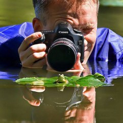 honlapkészítés és webáruház készítés keresőoptimalizálással | Fotósok veszélyben